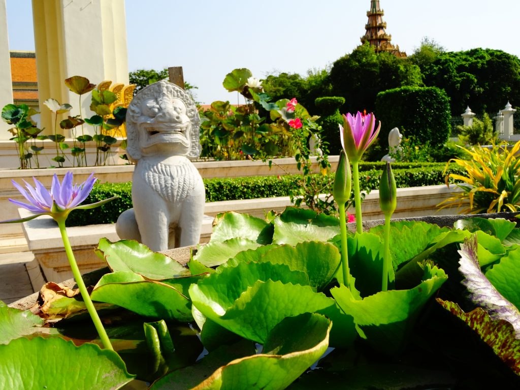 a lion statue surrounded by beautiful lotus flowers in the gardesn of the royal palace