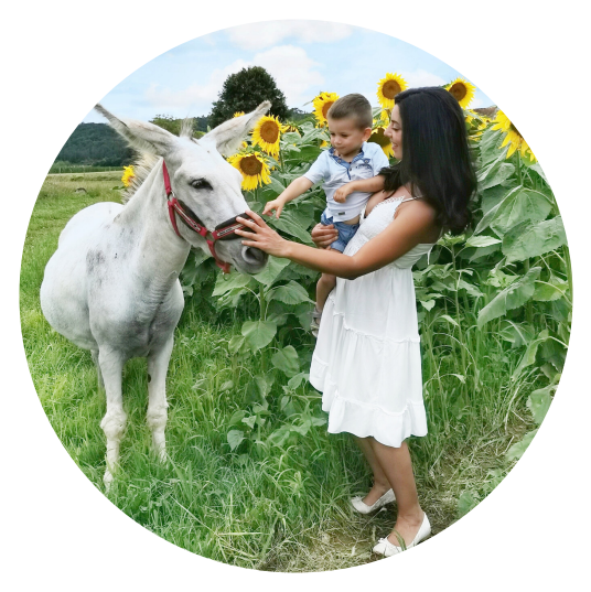 a family experience in countryside with the donkeys in montignac lascaux