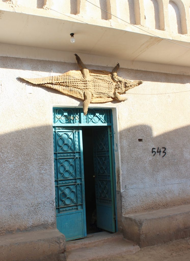 a crocodile staands on the top of a blue door in the Nubian Village - Aswan